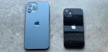 iPhone 12 mini vs iPhone 12 Pro Max