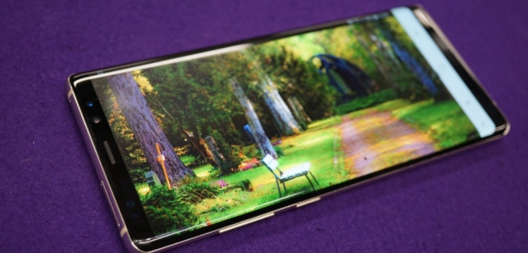 Samsung Galaxy Note 8 screen hero size garden image