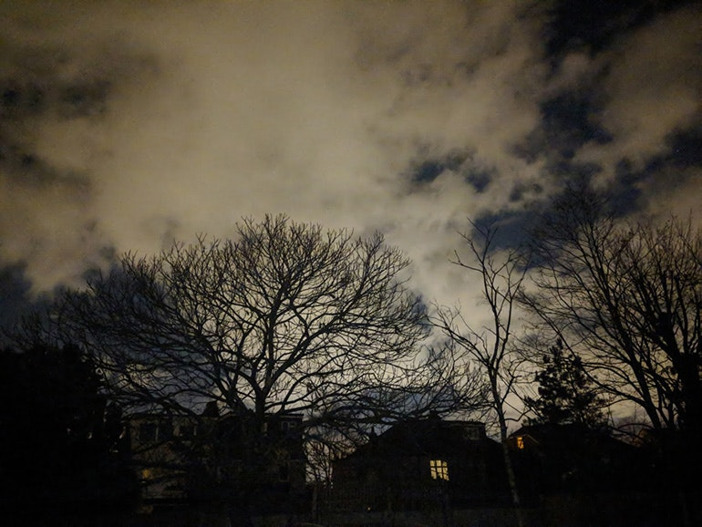Google-Pixel-2-camera-sample-nighttime-trees
