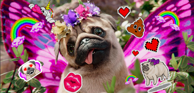 Snapchat adds new Puggerfly AR pet, as service goes free on Three Go Binge