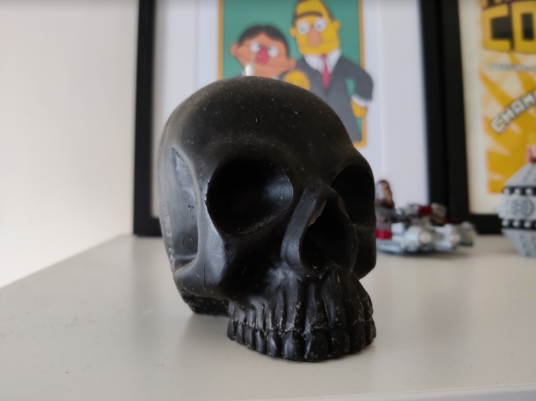 OnePlus 8T camera sample skull