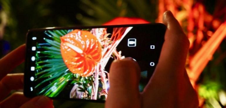 Huawei Mate 10 camera plant hero size
